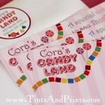 Chevron Candyland Inspired Birthday Party